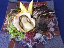 期間限定 天草産 岩牡蠣